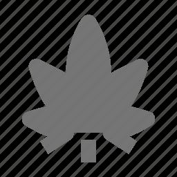 cannabis, leaf, marijuana, medicine icon