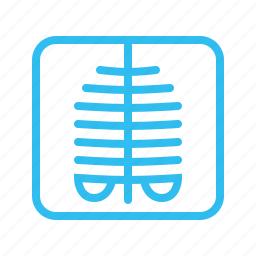 medical, medicine, radiology, radioscopy, skeleton, xray, xray icon icon