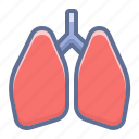 lungs, pulmonologist, pulmonology icon