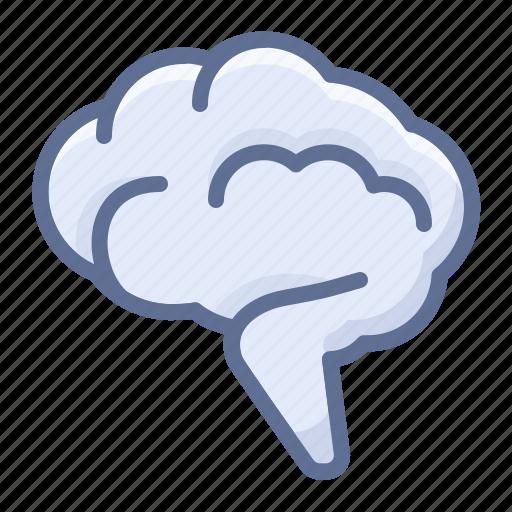 brain, mind, neurologist icon