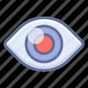 eye, look, watch