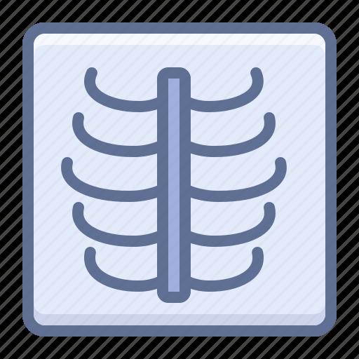 radiology, ribs, xray icon