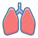 anatomy, lungs, pulmonologist icon
