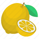 citrus fruit, food, fruit, lemon, lemon slice icon