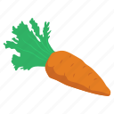 carrot, food, nutritious meal, radish, vegetables icon