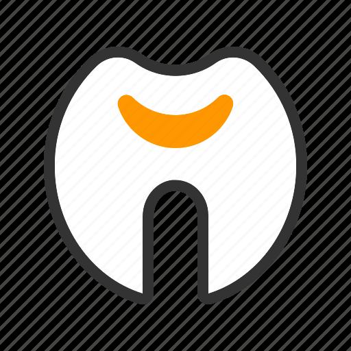 care, dentist, health, medical, teeth, tooth icon