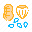 assortment, food, healthy, nuts
