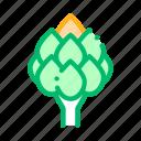 artichoke, food, healthy, vegetable