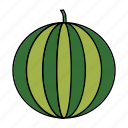 berry, food, friut, healthy, round, vegan, watermelon icon