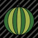 berry, food, friut, healthy, round, vegan, watermelon icon
