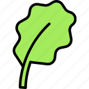 grass, leave, salad icon