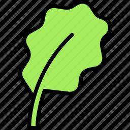 grass, leaf, salad icon