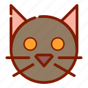 cat, face, halloween icon
