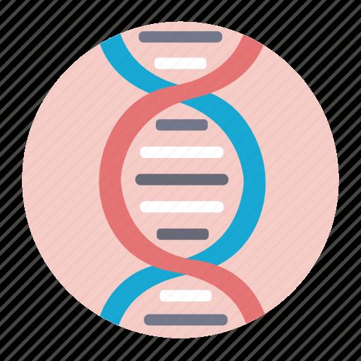 dna, molecule, research, science icon