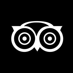 advisor, hexagon, media, social, trip icon