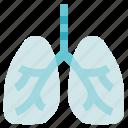 breath, lungs, organ anatomy, pulmonology icon
