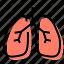 lungs, breathing, organ, medicine