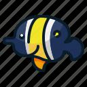 angel fish, animal, aquarium, diving, fish, ocean, sea icon