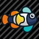 animal, clown fish, dive, fish, nemo, ocean, sea icon