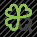 clover, flower, garden, luck, nature, plant, tree