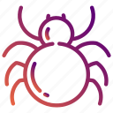 cobweb, halloween, holiday, insect, party, spider, web icon