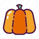 fruit, halloween, holiday, party, plant, pumpkin, squash icon