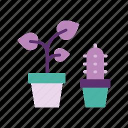 cactus, decor, decoration, home, leaves, plant, plants icon