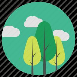 backyard, garden, home, lifestyle, nature, park, tree icon
