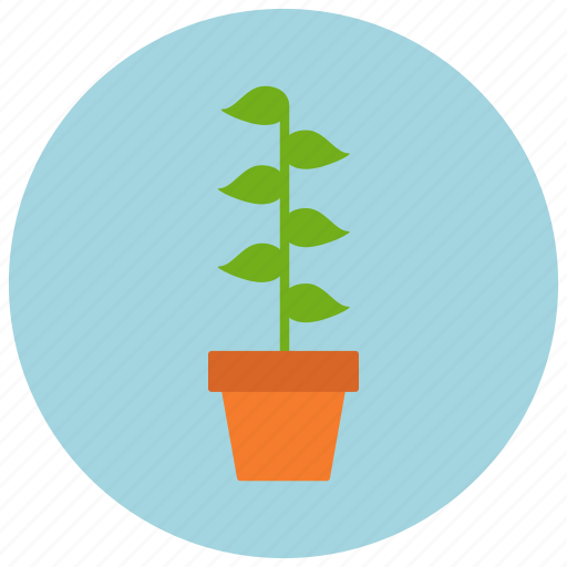 home, leaves, plant, pot icon