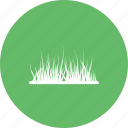 decoration, garden, grass, nature, plant, pot, spring icon