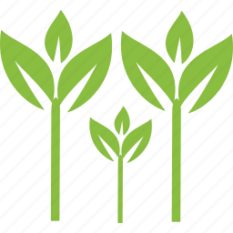 environment, leaves, plant, plants, tree, trees, weed icon