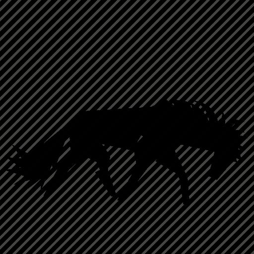 animal, horse, pony, stallion, stud icon