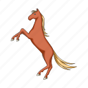 animal, horse, pet, ungulate