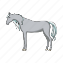 animal, horse, pet, ungulate, zoo