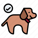 allowed, animals, friendly, pet, pets icon