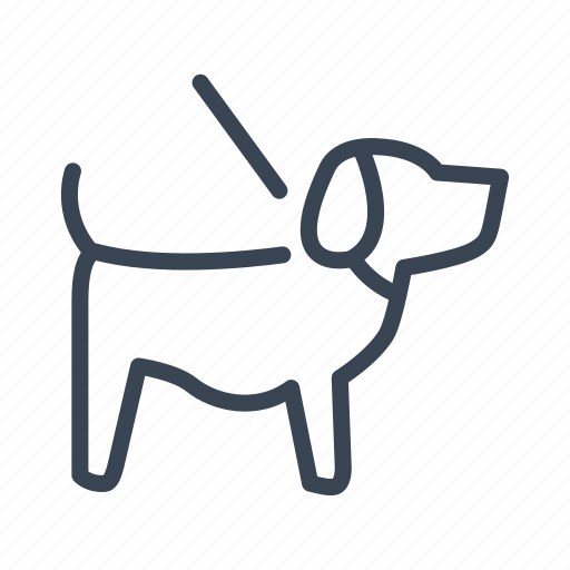 allowed, dog, friendly, pet icon