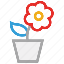 flower, nature, plant, pot plant icon