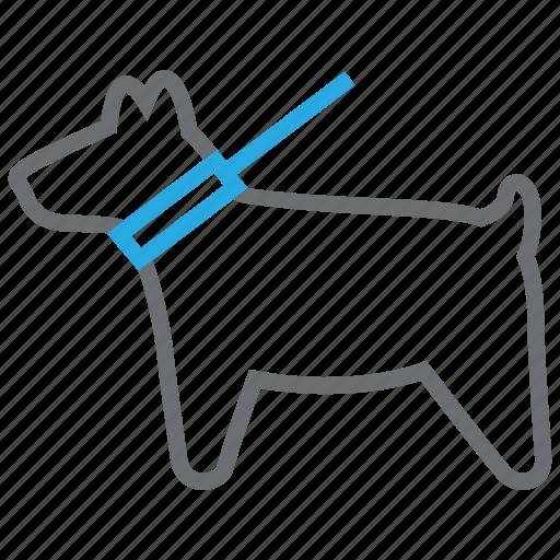 animal, animals, dog, paw, pet, puppy, walk icon