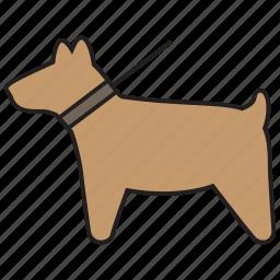 animal, dog, pet, walk icon