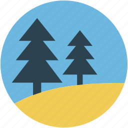 evergreen trees, fir- trees, greenery, trees, two fir trees icon