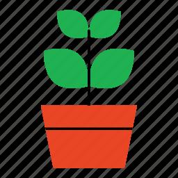 flower, flower pot, household, leaves, petals, plant icon