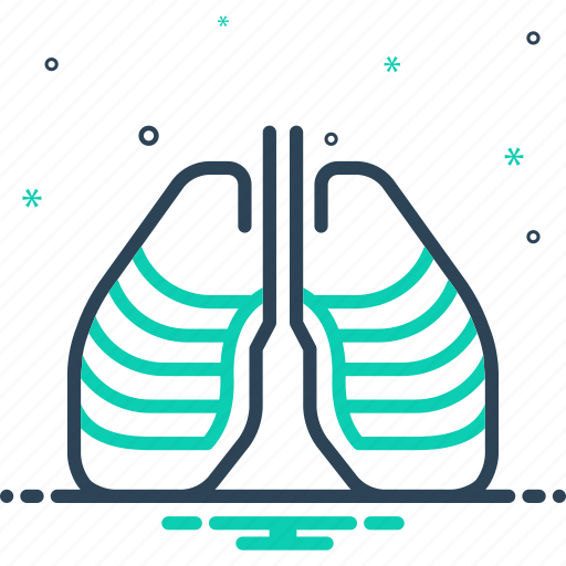 ribcage, skeleton, strnum, thorax, torso, vertebra, xray icon