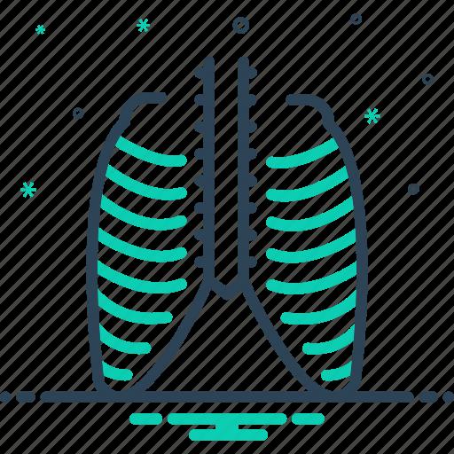 chest, ribcage, strnum, thorax, torso, vertebra, xray icon