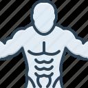 abdomen, abs, bodybuilder, diet, exercise, muscles icon