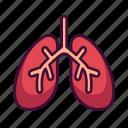 anatomy, body, lungs, medical, organ