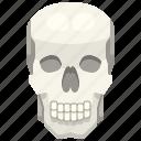 anatomy, body, bone, part, skeleton, skull icon