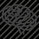brain, brainstorming, idea, neurology, neurosurgery icon
