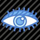 eye, eyeball, ophthalmology, visible