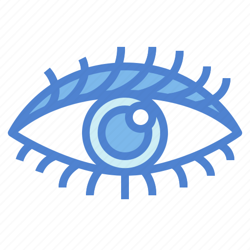 Eye, eyeball, ophthalmology, visible icon - Download on Iconfinder