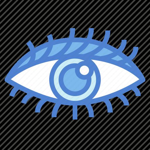 eye, eyeball, ophthalmology, visible icon